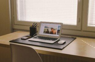 panduan sukses bisnis internet