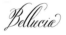 Jenis font cocok untuk desain undangan pernikahan - Belluccia