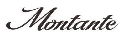 Jenis font cocok untuk desain undangan pernikahan - Montante